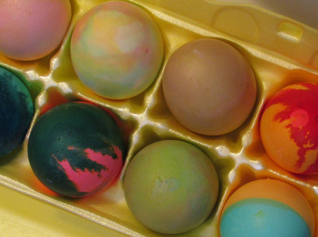 Colored Easter Eggs in a Carton Free Photo