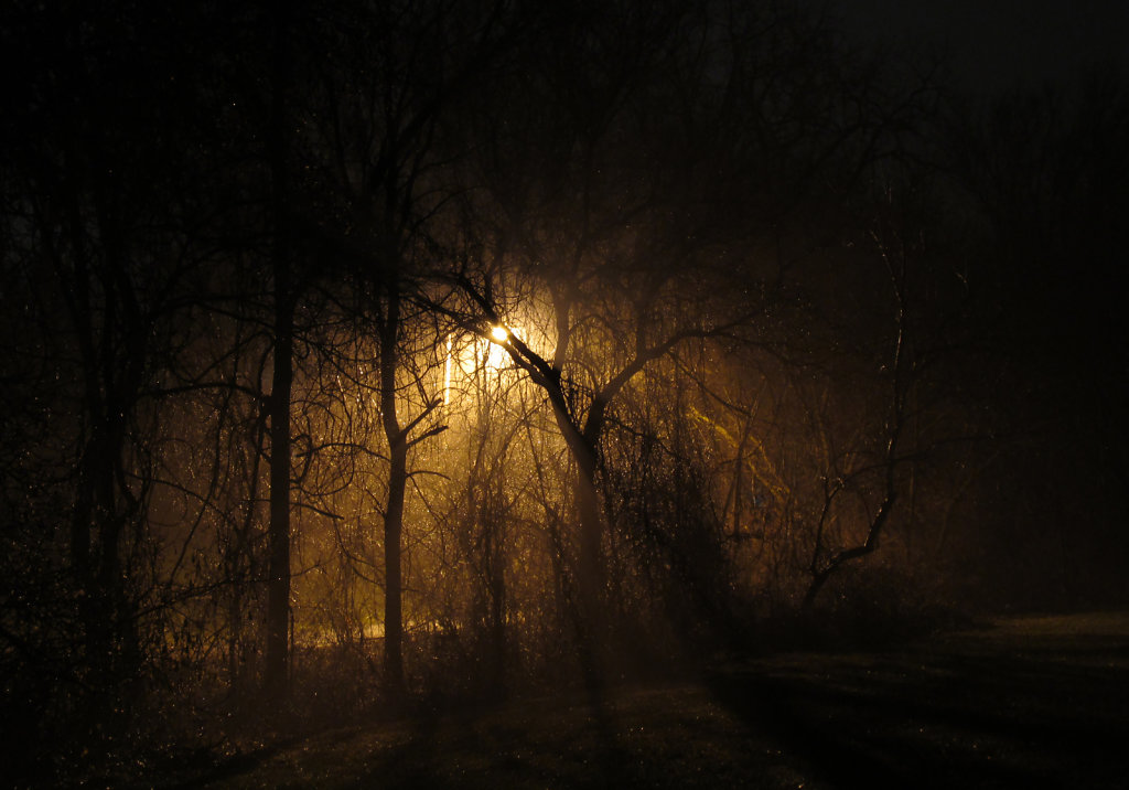 Picture of dense fog with a street lamp light