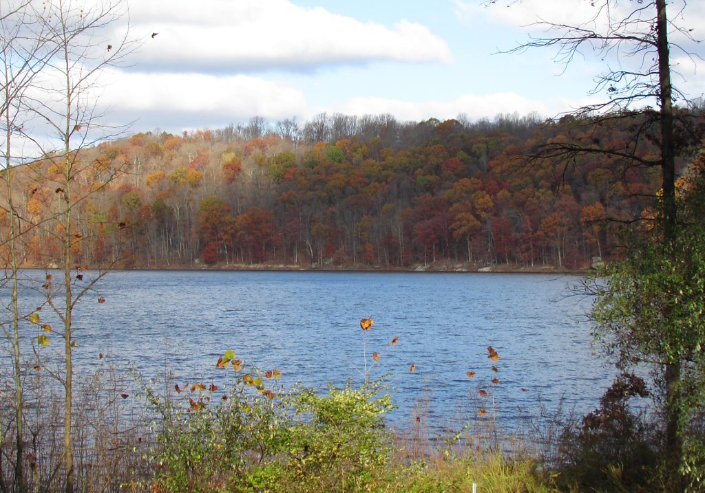 across the lake during fall
