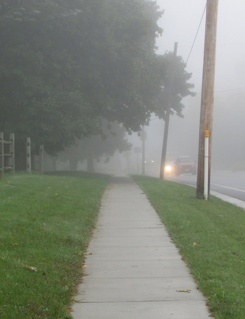 Fog during the morning drive